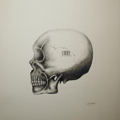 Skull 15 x 11 In Pencil on paper Sold